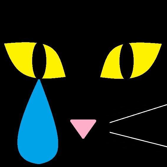 砂漠の黒ネコ企画